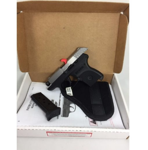 Ruger LCP Stainless Pistol