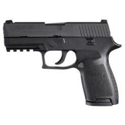 Sig Sauer P250 40 S&W Pistol