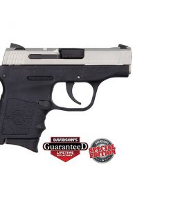 SMITH & WESSON BODYGUARD SHIMMERING ALUMINUM .380ACP PISTOL